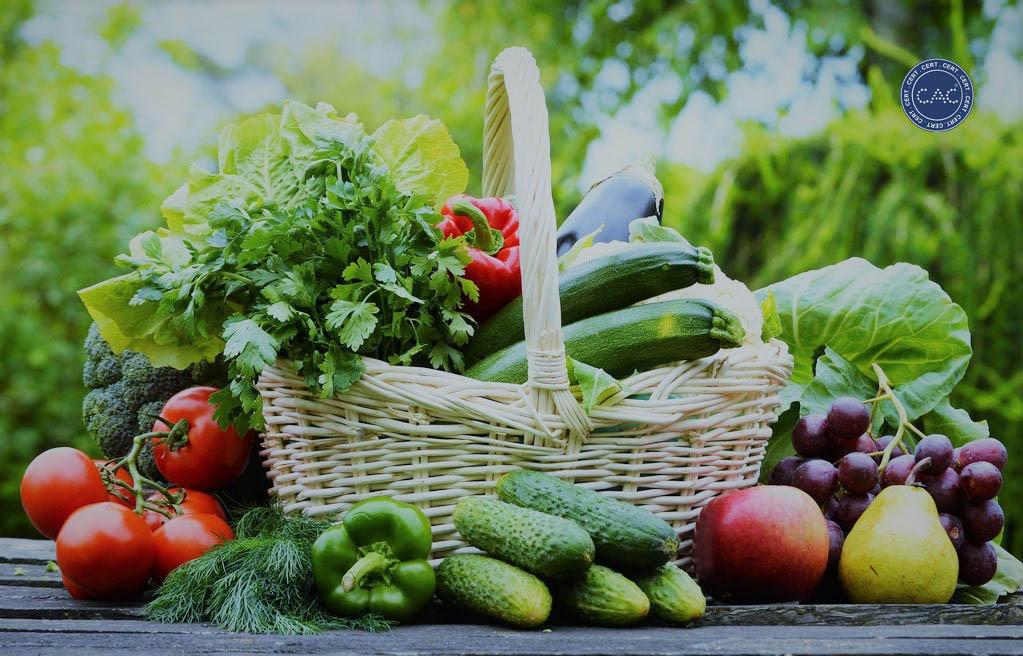 Điều kiện chứng nhận nông nghiệp hữu cơ